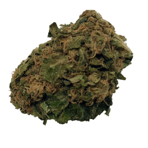 Master-Kush fleur CBD Green