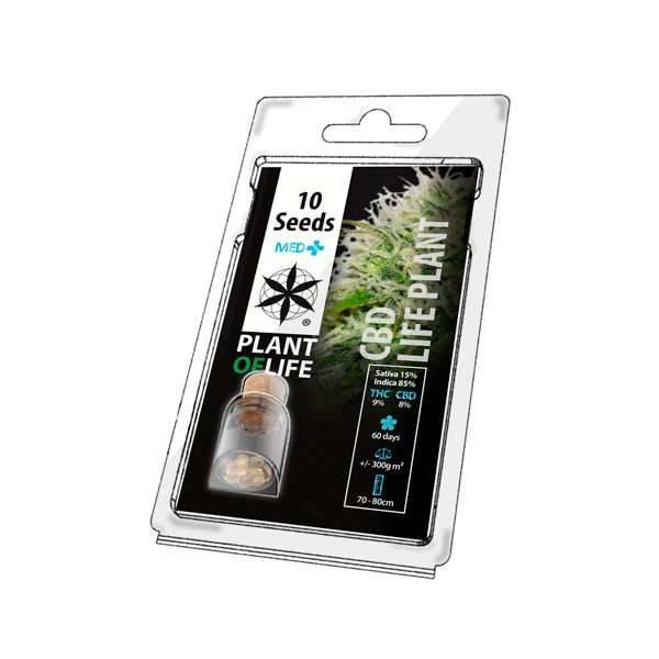 Graines médical CBD LIFE PLANT