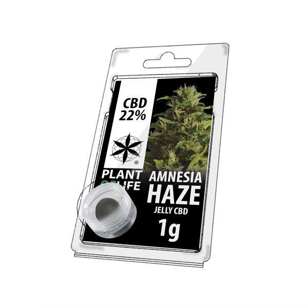 Amnesia Haze 22% CBD