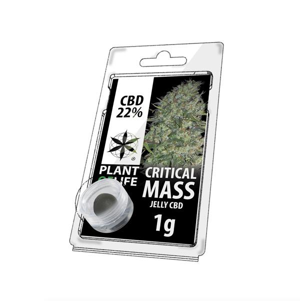 Critical Mass 22% CBD