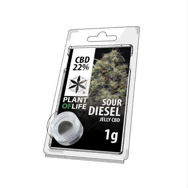 Sour Diesel 22% CBD
