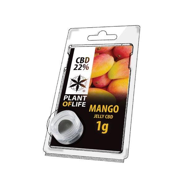 Mango 22% CBD